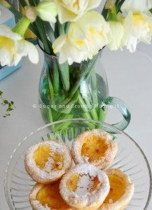 Custard tarts (compressed)