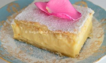 custard-slice-compressed